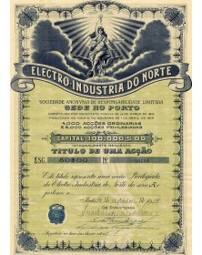 Electricity Industries