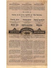 Chemin de Fer Local Deutschbrod-Saar. Chemins de Fer Locaux Exploités par l'Etat Autrichien