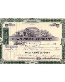 Bown Mining Co.
