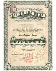 Salins de Soliman