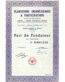 Plantations Indonésiennes & Participations