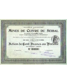 S.A. des Mines de Cuivres du Seibal