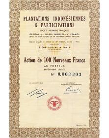 Plantations Indonésiennes