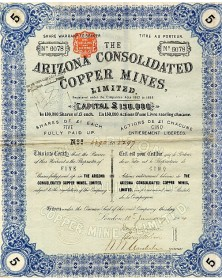 Arizona Consolidated Copper Mines, Ltd.
