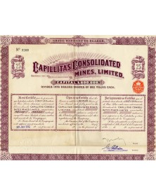 Capillitas Consolidated Mines, Ltd.