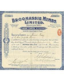 Broomassie Mines Ltd.