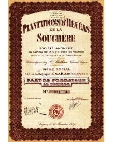 Plantations d'Hévéas de la Souchère