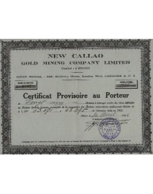 New Callao Gold Mining Company Ltd. 1928