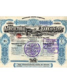 The Agricultural Bank of Egypt