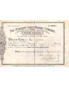 The Barrett Gold Mining Company