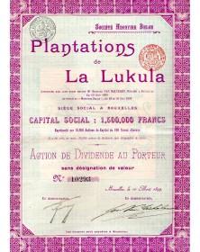 Plantations de la Lukula