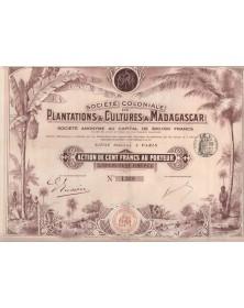 Sté Coloniale de Plantations & Cultures à Madagascar