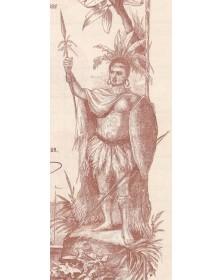 Cie Générale de l'Orénoque