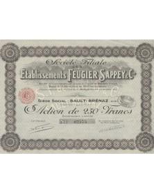 Sté Filiale des Etas Feugier Sappey & Cie