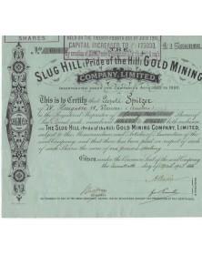 Slug Hill (Pride of the Hill) Gold Mining Co., Ltd.