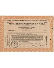 Nitrate Corporation of Chilie