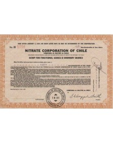 Nitrate Corporation Of Chile