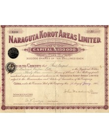 Naraguta Korot Areas Ltd