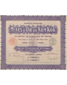 Gold Mines S.A. des Mines d'Or de Nam Kok