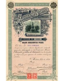 Compania Minera Barradon y Cabras de Guanacevi