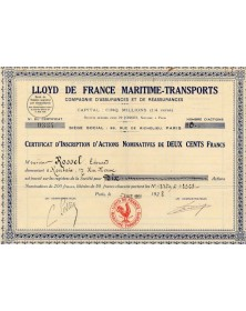 Maritime insurances