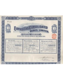 Capillitas Consolidated Mines, Ltd. 1909