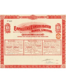 Capillitas Consolidated Mines, Ltd. 1910