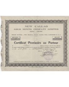 New Callao Gold Mining Company Ltd. 1924
