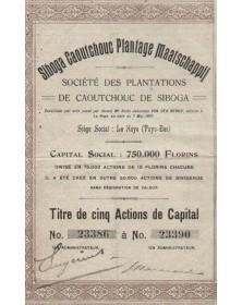 Sté. des Plantations de Caoutchouc de Siboga