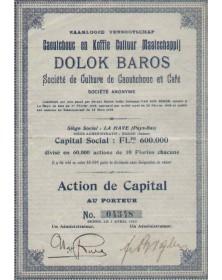 DOLOK BAROS  Sté de Culture de Caoutchouc et Café