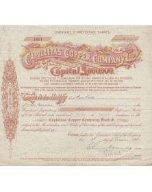 Capillitas Copper Co., Ltd.
