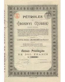 Pétroles de Grosnyi (Russie)