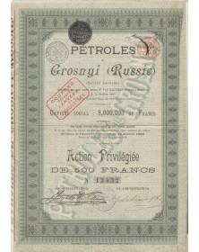 Pétroles de Grosnyi (Russie). 1895