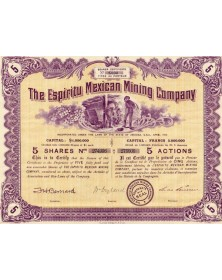 The Espiritu Mexican Mining Company