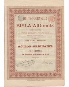 Hauts-Fourneaux de Biélaïa...