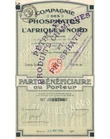 Cie des Phosphates de l'Afrique du Nord