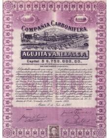 Cia Carbonifera Agujita Y Anexas