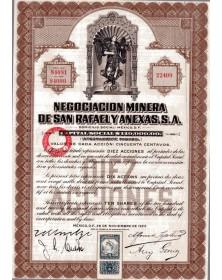 Negociacion Minera de San Rafael y Anexas S.A.