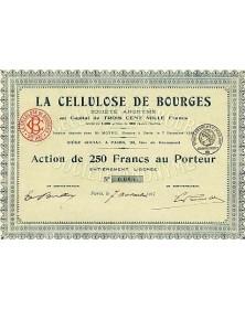 La Cellulose de Bourges