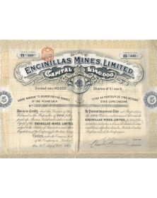 Encinillas Mines , Limited