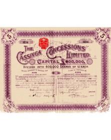 The Cassinga Concessions Ltd .