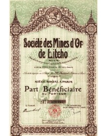 Sté des Mines d'Or de Litcho (SIAM)