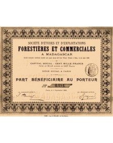 Sté d'Etudes et d'Exploitations Forestières et Commerciales