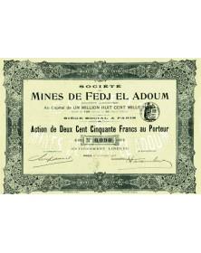 Sté des Mines de Fedj El Adoum