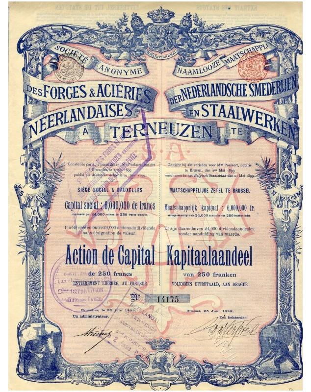 Nederlandsche Smederlien en Staalwerken te Terneuzen