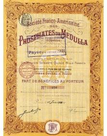 Sté Franco-Américaine des Phosphates de Medulla