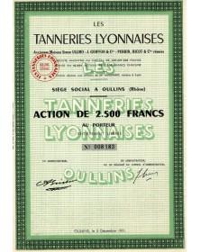 Les Tanneries Lyonnaises (Anciennes Maisons Ullmo, Goiffon & Perrin, Ricot)