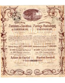 Sté des Plantations de Caoutchouc de Tapanoelie
