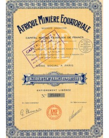 Afrique Minière Equatoriale, S.A.