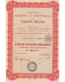 Sté Agricole et Industrielle du Thap-Muoi